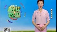 铜岭农庄-铜花岭松针土鸡(蛋)