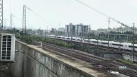 G546次(广州南站—郑州东站)本务郑州动车段CRH380B统型重联高速通过广州北站