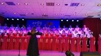第三届校园文化:19混声合唱(祖国有我,宁夏有我)朱敉蕤指挥,爱莲说录制,合唱团演唱