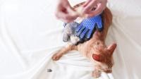 宅橘 撸猫手套 撸猫撸狗专用猫咪狗狗除毛宠物洗澡多功能手套 猫狗通用