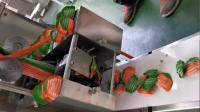 饺子机视频  小型饺子机做饺子的机器 厂家演示