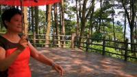 凤山公园舞乐