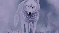 离奇故事《白狼宝藏》03