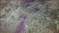 甘南自驾第七天-拉桑寺-措美峰