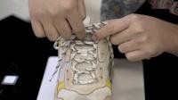 鞋带找牌swordlace