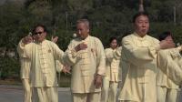 传统杨式太极拳八十五式