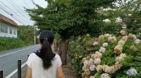 荣耀20pro记录日本之旅