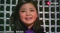歌曲香港之夜 邓丽君演唱