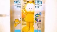 (宣传片)【上海】2019GARFIELD加菲猫白日梦游记上海虹桥南丰城