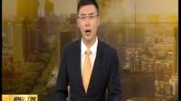 """浙江温州:中国首只克隆猫""""大蒜""""回家 主人——希望性格和以前的猫一样"""