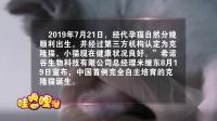 """中国首只克隆猫""""大蒜""""满月回家,克隆大蒜花费主人25万人民币"""