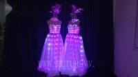 参加大型聚会必备LED发光晚礼服,LED发光长裙,舞会LED裙子