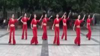 中老年广场舞 广场舞教学 套马杆