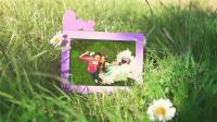 AE模板 pr模板 1110浪漫爱情芬芳草地上婚礼婚庆电子相册视频片头ae模板 年会视频 企业视频