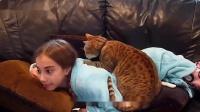 不光是主人给猫咪按摩,没想到猫咪也给主人按摩,主人太会享受了