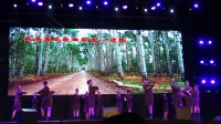 【Strawberry Alice】2019中国上海国际艺术节:艺术天空系列演出:俄罗斯国立远东歌舞团《胜利之舞》,2019-10-18 上海城市草坪音乐广场