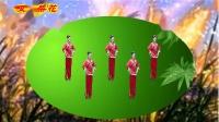 苏北君子兰广场舞--399--拔根芦柴花(江苏民歌)