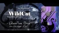 【境界乐器搬运】Vivie WildCat (ver1) DemoSound