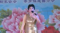 4.粤曲独唱:《浔阳江上浔阳月》表演者:黎思思 演出单位:永安粤乐社