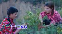 一首《妹妹爱上庄稼汉》好听,陕北情歌,听醉了陕北汉子