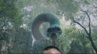 我在大蛇截了一段小视频