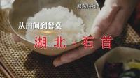 宗尧鸭蛙稻大米广告 10s