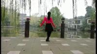 三妹广场舞 注满舞池背面