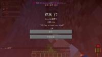 【籽岷直播回看】19.11.22-P2我的世界RLCraft番外Day1