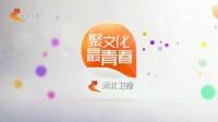 河北卫视台呼(完整高清版)_高清版(10s)