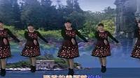 芹艺广场舞,金珠玛米,