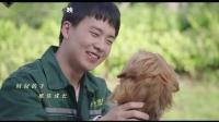 金玟岐献唱《宠爱》电影推广曲MV《因为宠爱》