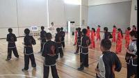 新人教版小学体育与健康3-4年级水平二 体育运动技能 武术 二、武术组合动作5.马步击掌-张-省级优课