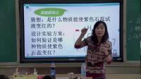 部编人教五四学制初中化学八年级《二氧化碳和一氧化碳》获奖课教学视频,甘肃省