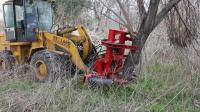 Tree shear tree cutter working video