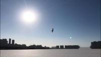 爱剪辑-冬韵之九--白头翁七子湖放飞鹞子