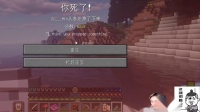 偷塔失败了 我的世界籽岷 RLCraft生存_超清
