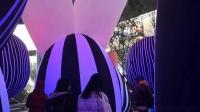 【Strawberry Alice】上海新天地·萌鼠唱新春,澳大利亚飞天萌鼠美声合唱团激萌唱响新天地广场喷泉广场,2020-01-18 手机拍