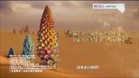 大漠传奇牌肉苁蓉片广告 60s