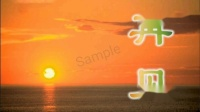 中国中央电视台再见(第3版)