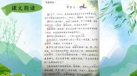 17号二下语文《笋芽儿》龙游樾园小学吴婷.