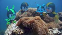 博博鲁探险队中文版111_CoralReef_珊瑚礁探险
