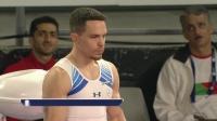 2020年 墨尔本站 女子高低杠&男子吊环 决赛