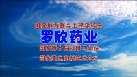 罗欣药业2020拜年广告 8s