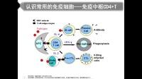 """""""小贝开讲"""" 从新冠肺炎病毒谈谈免疫功能检测的重要性-刘香岚"""