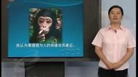 收录人类的进化(小学六年级科学)B856优秀示范课