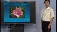 收录动植物的考察(小学六年级科学)B870优秀示范课