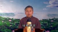 劉素雲老師複講 佛說大乘無量壽莊嚴清淨平等覺經 46