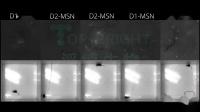 滔博生物中国授权代理_Inscopix应用视频_小鼠帕金森疾病数据.mp4