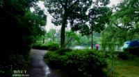 长崎は今日も雨だった(长崎今天下雨了) - 邓丽君(C Y无损试音版)