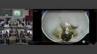 部编人教五四学制化学八年级《实验活动3燃烧的条件》优质课教学视频,黑龙江